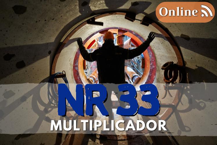 Curso nr 33 online multiplicador – 40h