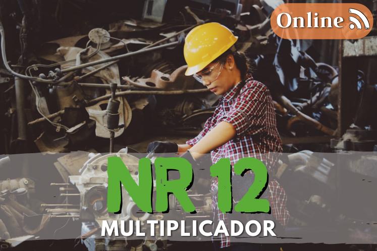 Curso nr 12 online multiplicador – 40h